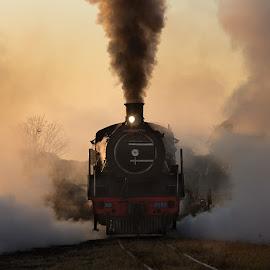 Cheugnette by Francois Retief - Transportation Trains