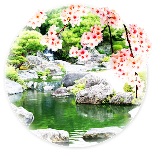 【Japanese garden and Sakura】