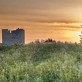 Morning by Milos Vasic - City,  Street & Park  City Parks