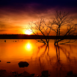 Day's End by Ken Smith - Landscapes Sunsets & Sunrises ( sunset, walnut creek, papillion, landscape, nebraska )