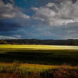 Evening upon us by Lavonne Ripley - Landscapes Prairies, Meadows & Fields