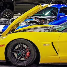 Chevy Corvette Z06 by Tony Bendele - Transportation Automobiles ( car, corvette, z06, chevy )
