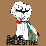 Save Palestine Defence Icon