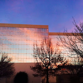 by Dawn Bowman - Buildings & Architecture Office Buildings & Hotels