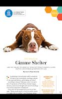 Screenshot of WebMD Magazine
