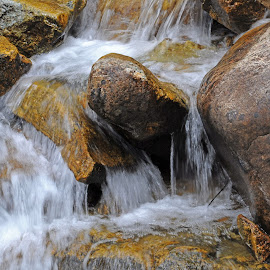 Small stream up close by Marko Ginsberg - Nature Up Close Water ( fall, bucannon trail, small waterfall,  )