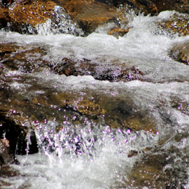 Spring Thaw by Leah Zisserson - Nature Up Close Water ( small falls, stream, waterfall, spring, river )