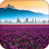 Download Valley Flower Live Wallpaper APK on PC