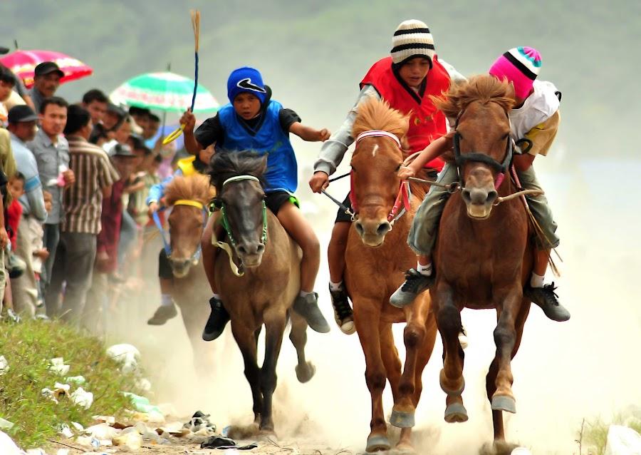 Pacuan Kuda by Edy Saputra - Sports & Fitness Other Sports ( pacuan kuda, edi saputra )