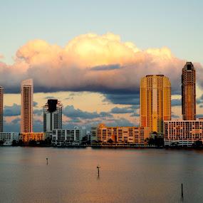 Williams Island, FL by Neil Dern - City,  Street & Park  Skylines ( sky, color, buildings, water, landscape )