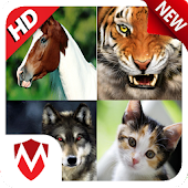 Download 120 Animal Sounds APK for Laptop
