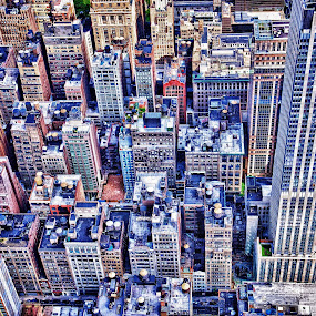 New York New York by Savio Joanes - City,  Street & Park  Skylines