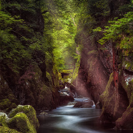 Fairy Glen by Tim McAndrew - Landscapes Waterscapes ( water, fairy glen, wales, green, conwy, long exposure, light, rays )