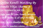 The Importance of Horoscope Matching Online Pt. Vikas Sharma Ji