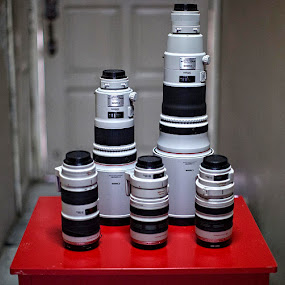 My Staff  by Jeffri Jaffar - Artistic Objects Other Objects ( ef 70-200mm, ef 300mm, ef 28-300mm, ef 500mm, ef 100-400mm, canon lens )