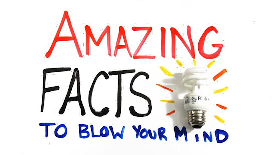 Amazing Facts - screenshot