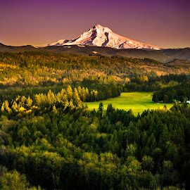 Mt. Hood by Becca Fieken - Novices Only Landscapes ( oregon, mountain, sunset, colors, green, sandy river, forest, hood )