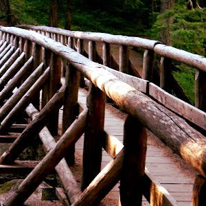 Bridge fence.JPG