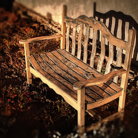 Bench Portrait by Michael Land - Artistic Objects Furniture ( bench, america, sunset, shadow, wyoming, decay )