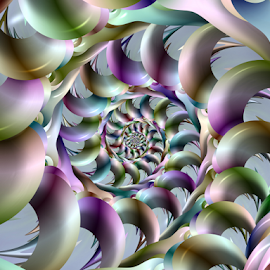 Spiral 33 by Cassy 67 - Illustration Abstract & Patterns ( shell, colorful, abstract art, swirl, wallpaper, digital art, harmony, spiral, fractal, digital, fractals, energy )