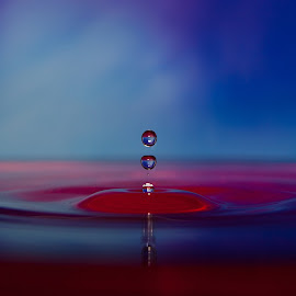 by Radek Lauko - Abstract Water Drops & Splashes ( water, water drops, coloured )