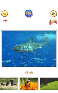 Animal sounds - App for kids APK for Bluestacks