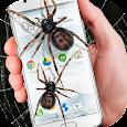 Spider in phone funny joke
