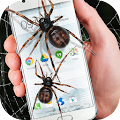 Spider in phone funny joke APK for Bluestacks