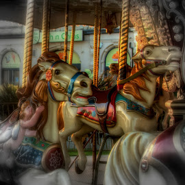 Carousel Horses by Doug Faraday-Reeves - City,  Street & Park  Amusement Parks ( carousel horses )