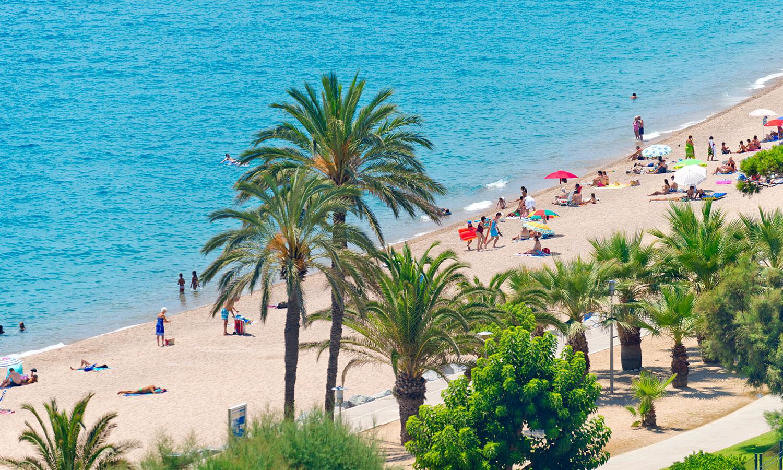 Пляжи пинеда фото испания