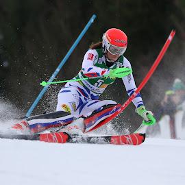by Igor Martinšek - Sports & Fitness Snow Sports ( golden fox, fis world cup slalom women, slovenia, petra vlhova, kranjska gora )
