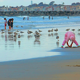 Playing in the Sand by Jeannine Jones - People Street & Candids