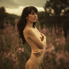 Sunset by Dmitry Laudin - Nudes & Boudoir Artistic Nude ( nude, girl, nature, sunset, summer )