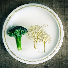 Broccoli Tree by Zahraa Salih - Food & Drink Plated Food ( veg, tree, green, woody, vegetables, trees, broccoli, vegetarian, table, kitchen, veggie, veggies,  )