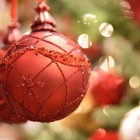 Red Christmas Balls  by Lorraine D.  Heaney - Public Holidays Christmas (  )