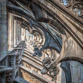 Duomo di Milano, Italy by Horizon Photo - Buildings & Architecture Architectural Detail ( duomo di milano, italy )