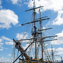 Tall Ships by Will McNamee - Transportation Boats ( gigart@aol.com, aundiram@msn.com, danielmcnamee@comcast.net, mcnamee2169@yahoo.com, ronmead179@comcast.net )