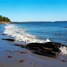 Fall at Rissers Beach by Lena Arkell - Landscapes Beaches ( canada, nova scotia, rissers beach, ocean, beach, atlantic )