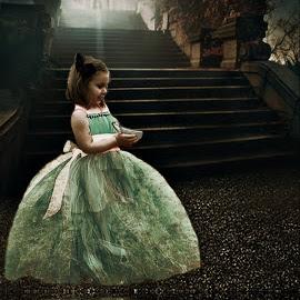 by Stephanie Shuman - Babies & Children Child Portraits