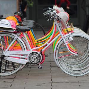 rainbowcycle.JPG
