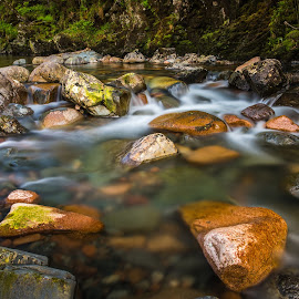 Fast flow. by Haim Rosenfeld - Landscapes Forests ( exposure, scotland, stream, europe, mountain, colorful, land, stone, rock, yellow, travel, north, landscape, long, of, adventure, kingdom, shadow, light, lonely, foreground, water, orange, united, uk, celtic, texture, green, colors, scottish, image, brawn, scenic, highlands, photo, cascade, outdoor, brown, scenery, stunning, river, britain )