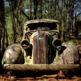 Pontiac In The Woods by Greg Mimbs - Transportation Automobiles ( old, grill, headlights, georgia, junkyard, bumper, pontiac in the woods. rusty, rust, woods, pontiac, greg mimbs,  )
