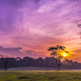 Sunrise over the park by Gordon Koh - Landscapes Sunsets & Sunrises ( sunrise, punggol )