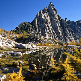 Cascades Fall Color by Marc Baisden - Landscapes Mountains & Hills ( grace, northwest cascades, climbing, adventure, seasons, travel )