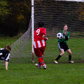 Altrincham Ladies FC vs Blacon Ladies FC - November 2013 by Michael Ripley - Sports & Fitness Soccer/Association football ( ball, altrincham ladies fc, goalkeeper, score, community, tackle, win, team, shot, beech fields, header, goal, pass, field, altrincham, football, football club, shoot, club, altrincham fc, women's football, foul, grass roots )
