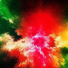 colored flower by Paul Wante - Digital Art Abstract ( art, colored, digital, photography, flower )