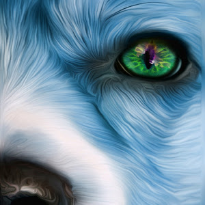 half wolf + eye change.jpg