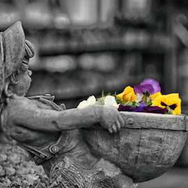 Boy Carrying Flowers  by Lorraine D.  Heaney - Buildings & Architecture Statues & Monuments