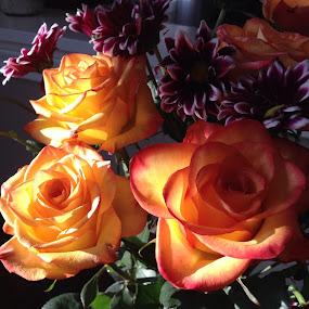 by Donna Silva - Flowers Flower Arangements