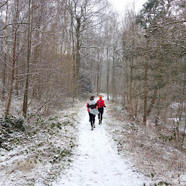 Running by Philippe Smith-Smith - Sports & Fitness Running ( winter, snow, forest, running, people )
